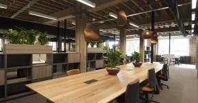 Selection of WWF's new Sydney office was based on a green lease arrangement